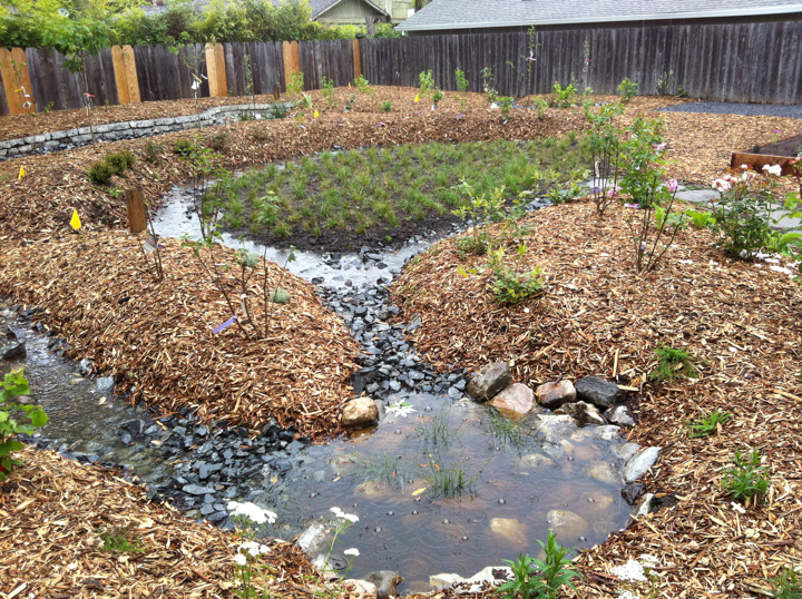 Earthen Pond Water Harvesting System